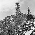 Pooley Canyon, Windy Arm, Yukon (16633607427).jpg