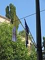 Pope Francis in Sarajevo 05.JPG