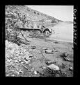 Porto Farina SdKfz 11 wreck May1943.jpg