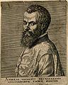 Portrait of Andreas Vesalius (1514 - 1564), Flemish anatomist Wellcome V0006026ER.jpg