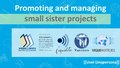 Promoting and managing small sister projects.pdf