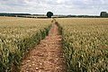 Public Bridleway near Heydour Lodge Farm - geograph.org.uk - 492625.jpg