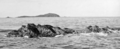 Queensland State Archives 960 Flood Rock near Goldsmith Passage c 1931.png
