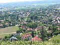 Radebeul Hoflößnitz mit Schlossberg (1).jpg