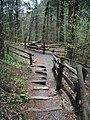 Raymondskill Falls - Pennsylvania (5678035716).jpg