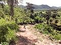 Redenção - State of Pará, Brazil - panoramio (6).jpg