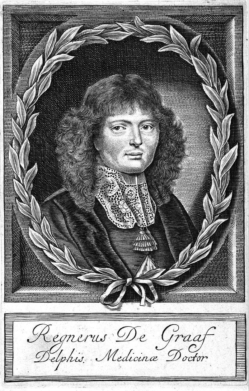 Reinier de Graaf 17e eeuw.jpg