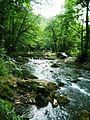 Reka Gradac 1.jpg
