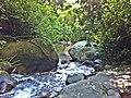 Rio Grande - Pau de Fome - panoramio (4).jpg