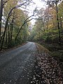 River Road at Clear Springs Nature Trail.jpg
