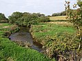 River Torridge - geograph.org.uk - 979830.jpg