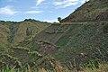 Road between Fort Portal and Rebisengo - Flickr - Dave Proffer (2).jpg