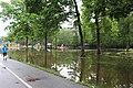 Roman Forest Flood Waters - 4-19-16 (25918359614).jpg