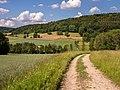 Roschlaub Landschaft P6033090.jpg