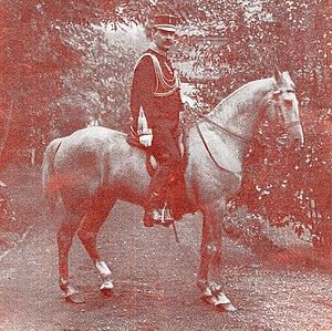 Edi Expedition - Image: Rost van Tonningen, MB. Luitenant generaal, commandant NI leger, adjudant HM, ridder derde en vierde klasse MWO