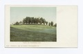 Round Top, Northfield, Mass (NYPL b12647398-62518).tiff