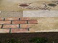 Ruinas del Palatino. 02.JPG