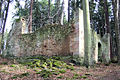 Ruine Toepfersdorf.JPG