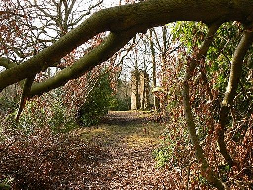 Ruins of Fielden house - panoramio