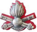 SADF 10 Artillery Brigade beret badge.jpg
