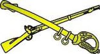 South Carolina State Guard - Image: SDF Branch Insignia Color