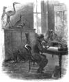 SMO V12 D661 Practical study of natural history - Wesleyan University.png