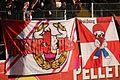 SV Ried RB Salzburg 30.JPG
