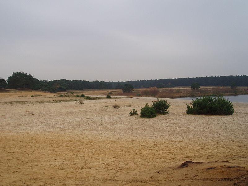 Bestand:Sahara Lommel 2.JPG