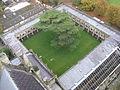 Salisbury Cathedral, cloister, from top of tower.jpg