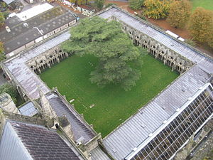 Cloister - Cloister at Salisbury Cathedral.