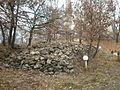 Samouil's fortress 2011, 15.JPG
