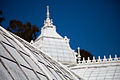 San Francisco Conservatory of Flowers-42.jpg
