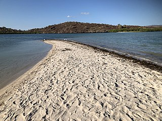San Ignacio Lagoon bay in Mexico