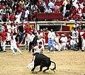 Sanfermines Vaquillas Pamplona 04.jpg