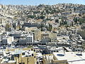 Saqf As-Seil Amman 2.JPG