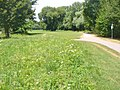 Schlosspark Tiefurt (Tiefurt Palace Park) - geo.hlipp.de - 40287.jpg