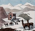 Schmidtmeyer- Scharf, George Johann - A hut in the mountains with snow and guanacos -JCB Library f1.1.jpg