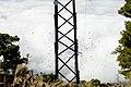 Schwarm Alpenkrähen.jpg