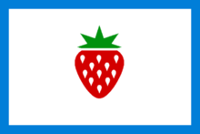 Searcy County AR Flag.png