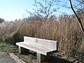 Seat dedicated to a walker - geograph.org.uk - 690860.jpg