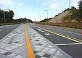 Sejong BRT Haemil-ri Station.jpg