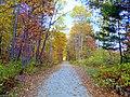 Sentier de couleurs - panoramio.jpg