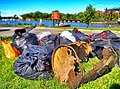 September 15, 2012 Trash collected at Anacosta River cleanup (8165198795).jpg