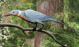 <i>Shanweiniao</i> Extinct genus of birds