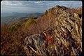 Shenandoah National Park SHEN9212.jpg