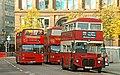 Sightseeing buses, Belfast - geograph.org.uk - 1003009.jpg