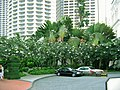 Singapore 2004 - Raffles Hotel - Entrance and orchids.jpg