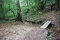 Small footbridge in Toll Wood - geograph.org.uk - 1493919.jpg