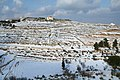 Snow - panoramio (51).jpg