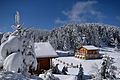 Snow Landscape 27-1-2017-3.jpg